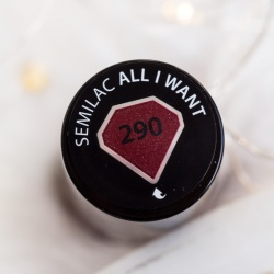 290 All I Want